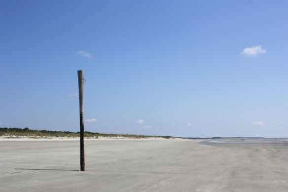 Taken December 2012 on Sapelo Island, Georgia