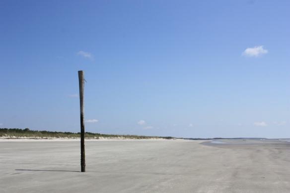 Taken December 2012 on Sapelo Island, Georgia