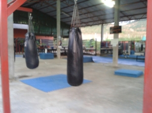 Tiger MT Beginner's Area. (The mats are up for cleaning to prevent Staph outbreaks.)