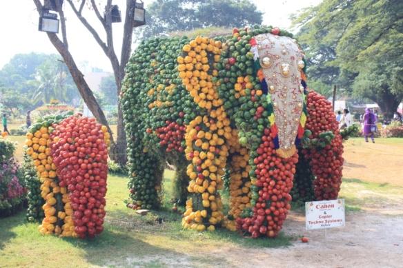 Taken October 3, 2014 in Mysore.