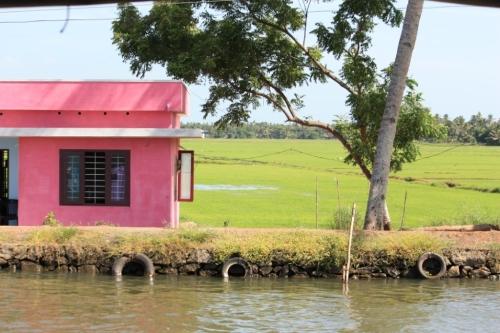 Taken in July of 2014 in the Backwaters of Kerala