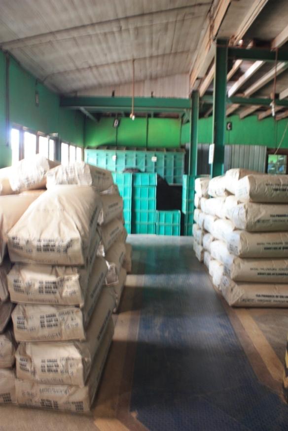 Taken on May 24, 2015 at the Glenloch tea factory in Katukithula, Sri Lanka