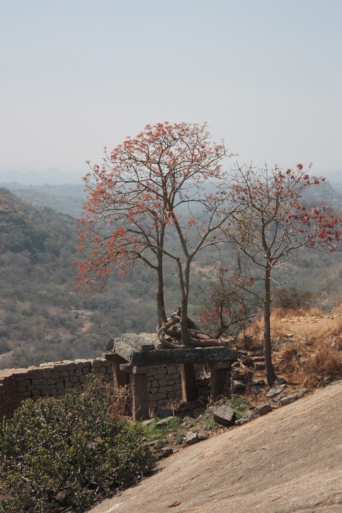 Taken in March of 2015 at Savanadurga