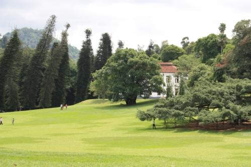 Taken on May 24 in Kandy