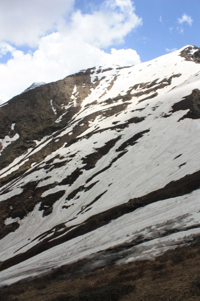 Taken June 10, 2015 in Great Himalayan National Park (GHNP).
