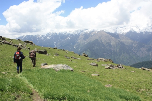 Taken on June 10, 2015 near Dhel in Great Himalayan National Park (GHNP)