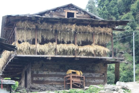 Taken on June 15, 2015 in Himachal Pradesh