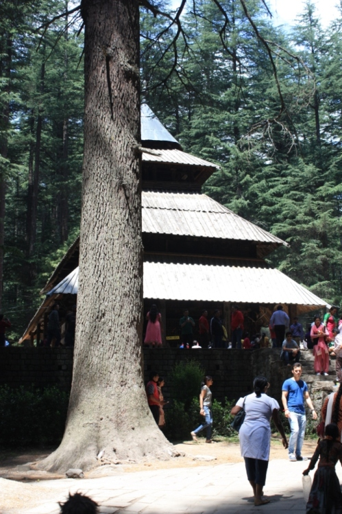 Taken in June of 2015 at the Hidimba Devi Temple in Manali