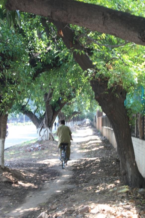 Taken on June 26, 2015 in Chandigarh
