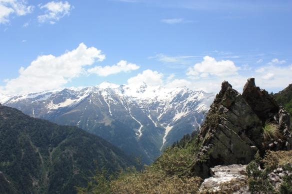 Taken in June of 2015 in Great Himalayan National Park