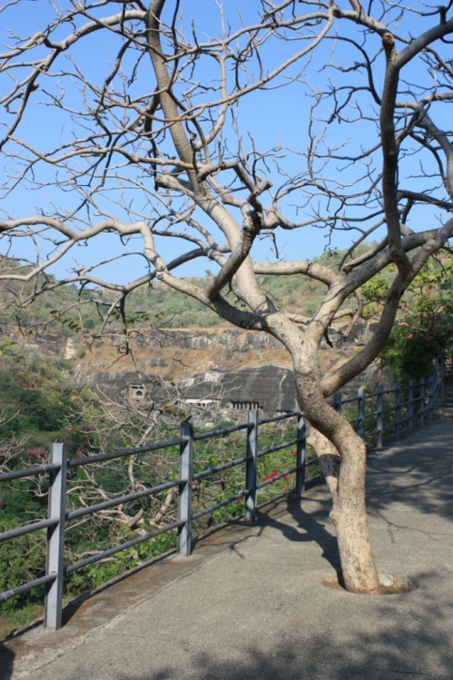 Taken in November of 2014 at Ajanta.