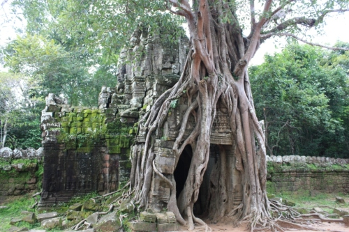 Taken in October of 2012 at Angkor