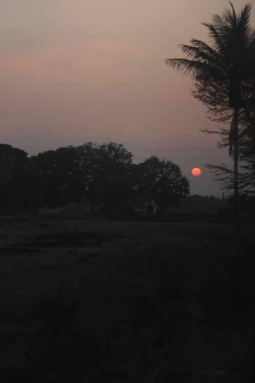 Taken on January 26, 2016 in Southern Karnataka