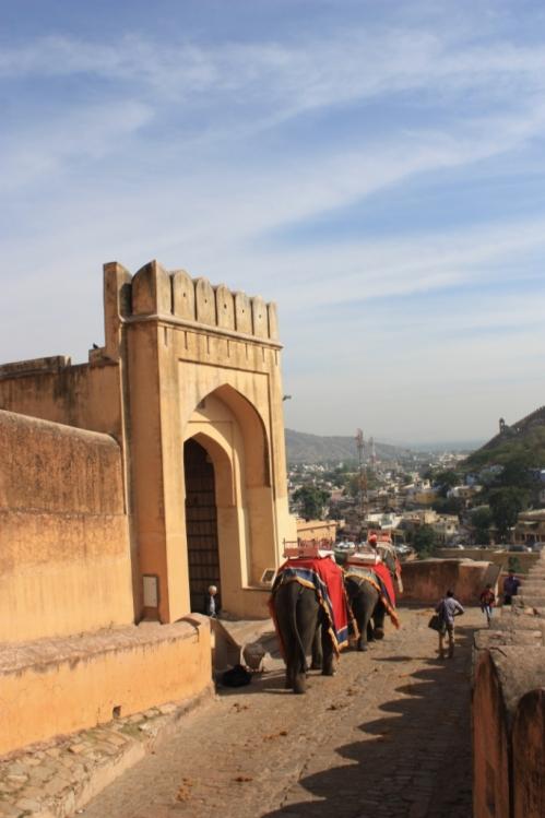 Taken in November 2015 in Jaipur