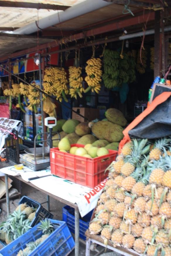 Taken in July of 2014 in Kochi (Cochin)
