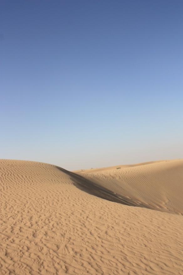 Taken in the desert outside Dubai in May of 2016