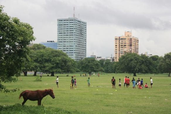 Taken on July 2, 2016 in Kolkata (the Maidan)