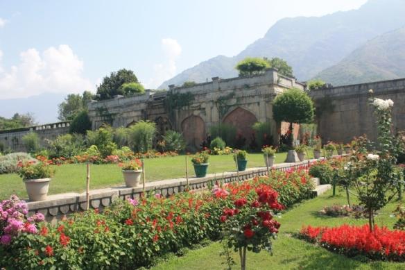 Taken in July of 2016 in Srinagar