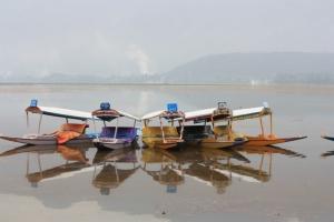 Taken in July of 2016 on Dal Lake, Srinagar