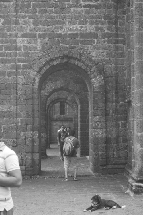 Arched buttresses of the Basilica of Bom Jesus