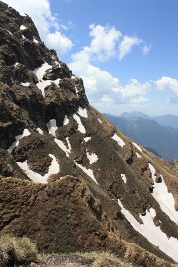 Taken in July of 2015 in Kullu District of Himachal Pradesh