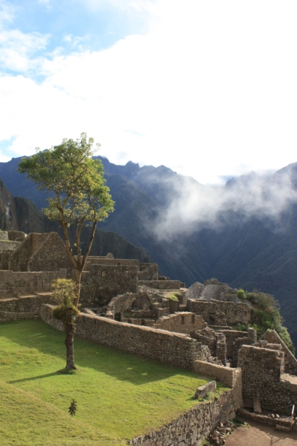 Taken in the Summer of 2010 at Machu Picchu